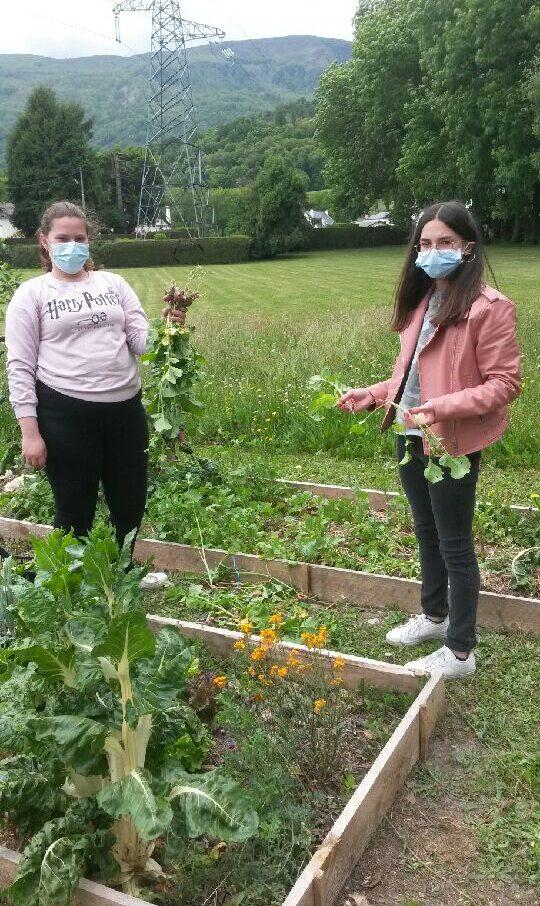 Les élèves ont pu avoir une belle récolte